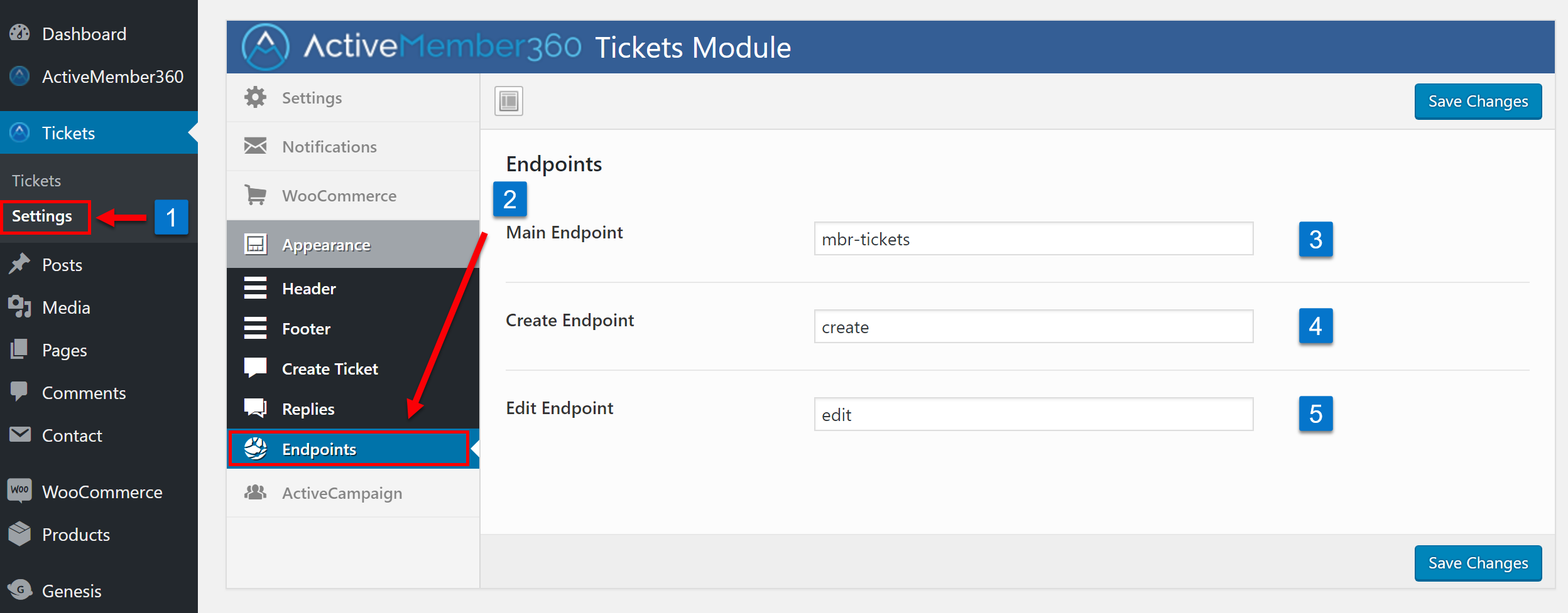Tickets Extension Appearance Endpoints Settings